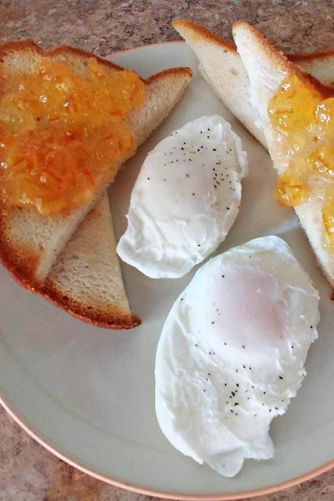 Vertical top-down image of two poached eggs sprinkled with salt and pepper on a white plate with an orange rim, with two pieces of white gluten-free toast cut in half diagonally and topped with orange marmalade.