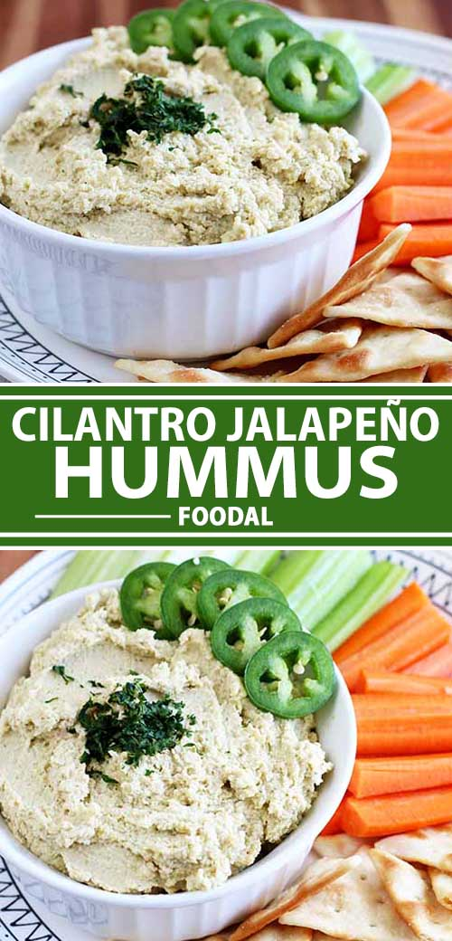 Looking for an easy snack or appetizer that everyone will love? This Spicy Cilantro Jalapeño Hummus is the recipe you need. A creamy dip that packs the perfect amount of heat into every flavorful bite, the combination of jalapeño and cilantro will tickle your taste buds with herbaceousness and spice. Read more now.