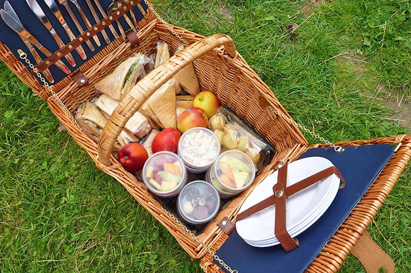 Horizontal overhead image of a wicker picnic basket with a lid that opens on either side, with dishes and flatware secured to the inner lid with leatherette straps, and a variety of foods in the bottom including fruits, bread, cheese, and plastic containers of salads and more, on green grass.