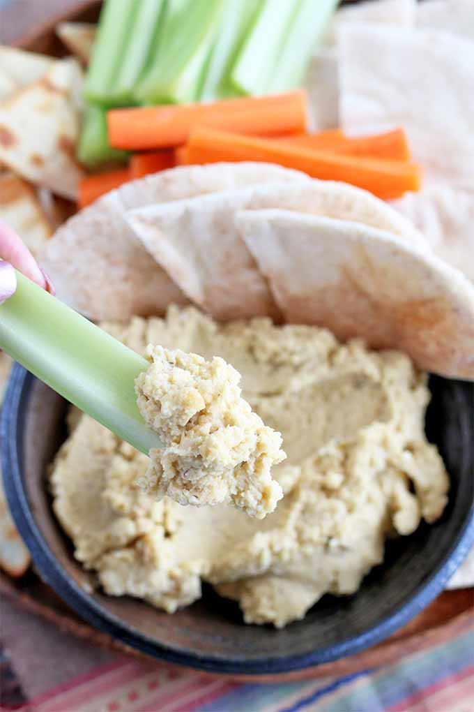 Vertical image of fingertips holding a celery stick with a dollop of hummus at the end, with a platter of pita crackers, carrot sticks, celery sticks, and sliced pita bread, with a serving of garlic hummus in a small round dish.