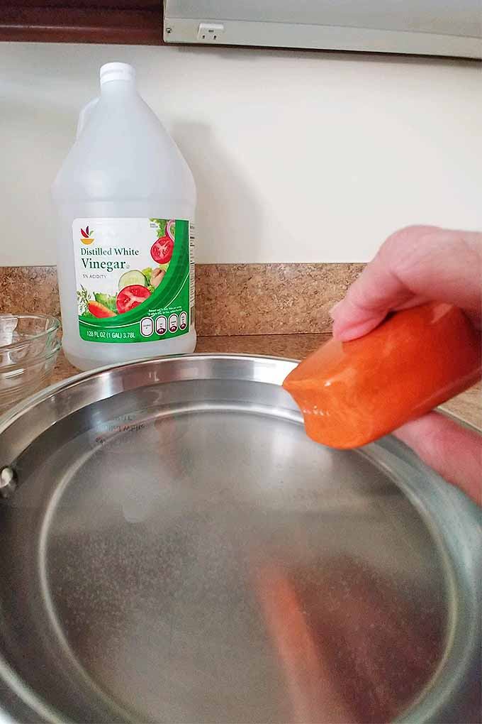Vertical image of a hand shaking an orange salt shaker into a frying pan of water, with a plastic jug of distilled vinegar in the background on a tan granite countertop.