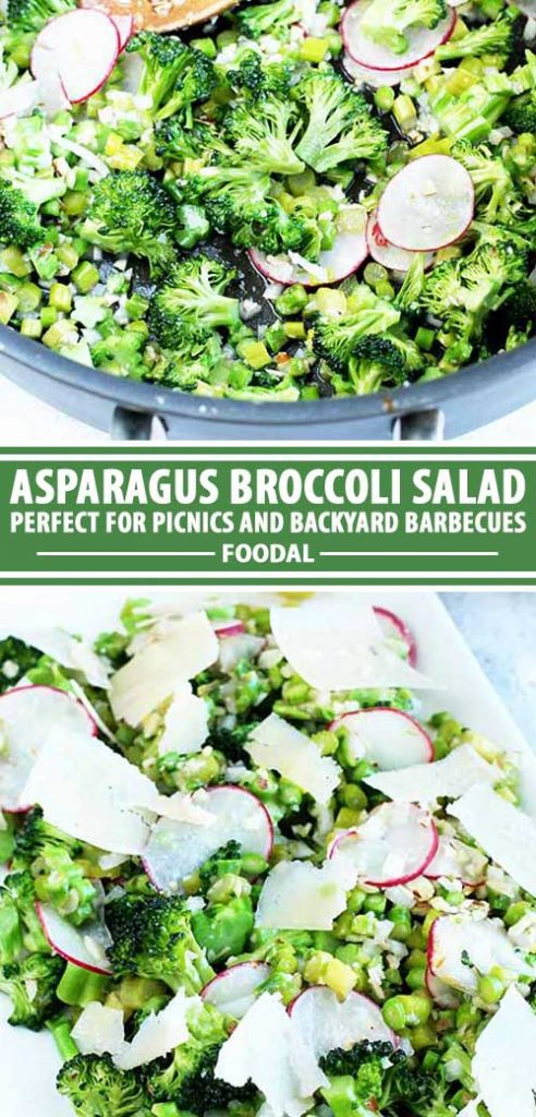 A collage of photos showing various views of an asparagus broccoli salad recipe.