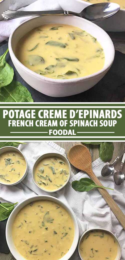 Forgot about that bag of spinach in your fridge? It's not too late to make a velvety cream of spinach soup. It's simply flavored with onions and vegetable stock, and thickened with egg yolks, cream, and flour. With a silky finish of just a little butter, you'll love eating your greens. Get the recipe on Foodal.