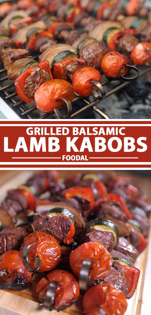 Grilled Balsamic Lamb Kabobs: Healthy Skewers for Summer Eating