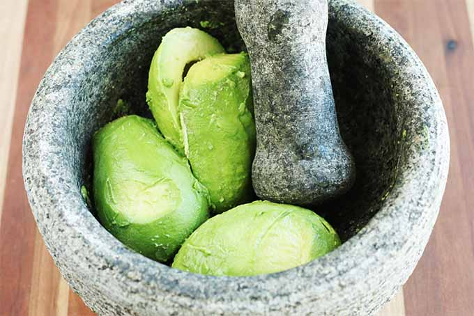 Peeled avocado halves in a gray stone molcajete, on a brown striped wood background.