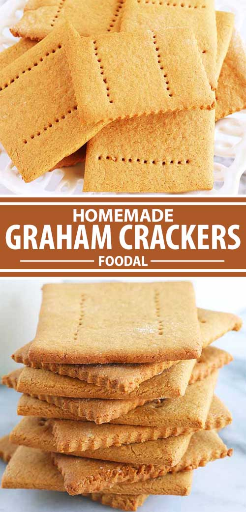 Who knew homemade graham crackers could be so easy to make? Simply mix, roll out, and bake to golden, lightly sweetened perfection. You won't be able to stop eating these. Top them with peanut butter or pair with chocolate and marshmallows for the perfect snack to enjoy at home or by the campfire. Get the recipe now. #snacks #baking #grahamcrackers #crackers #foodal