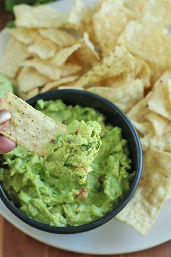 Two manicured fingers with pink nail polish dip a tortilla chip into a black bowl of green avocado dip, on a large white plate with more chips, on top of a brown wood table.