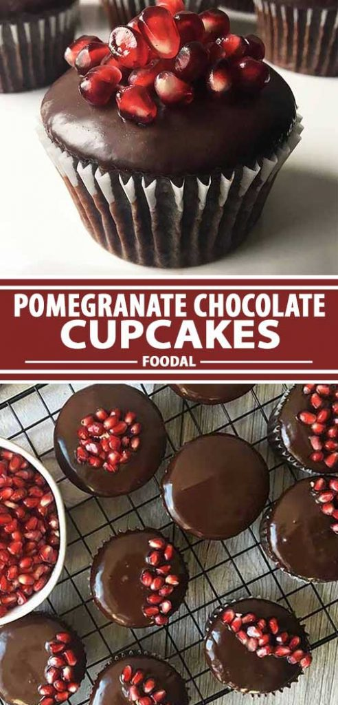 A collage of photos showing different views of a pomegranate chocolate ganache cupcakes.