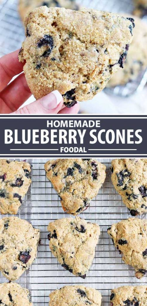 A collage of photos showing different views of a blueberry scone recipe.