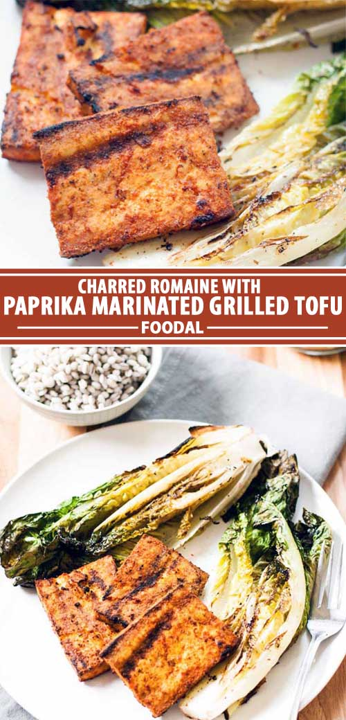 A collage of photos showing different views of a paprika marinated grilled tofu recipe.