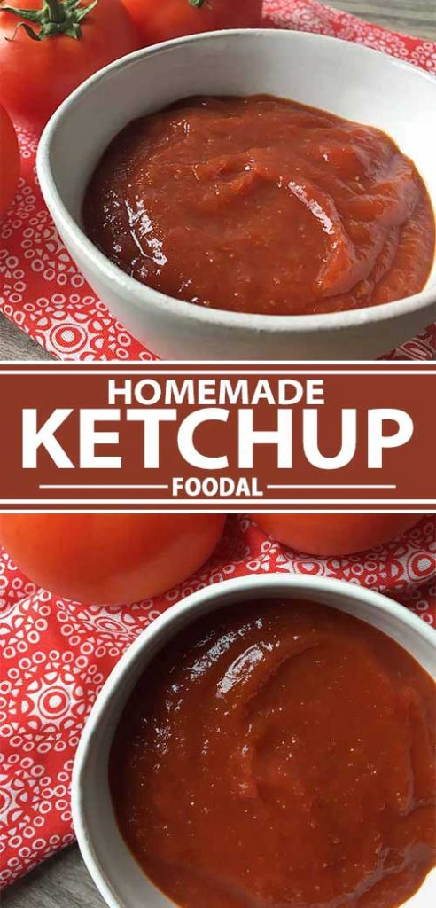 A collage of photos showing different views of a homemade ketchup recipe.