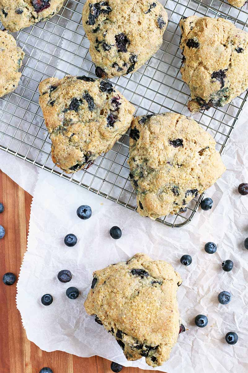 Top-down shot of blueberry scones cooling on a wire rack, on top of a white piece of parchment paper with one more of the baked goods in the foreground and scattered berries, on a brown wooden table.