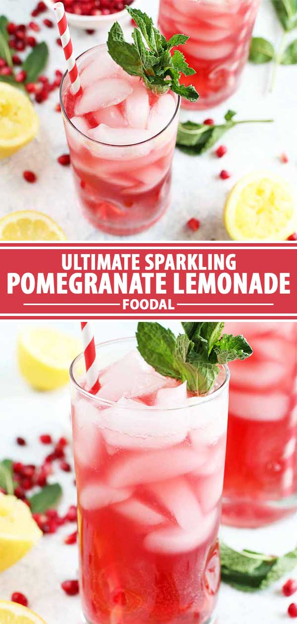 A collage of photos showing a pomegranate lemonade recipe.