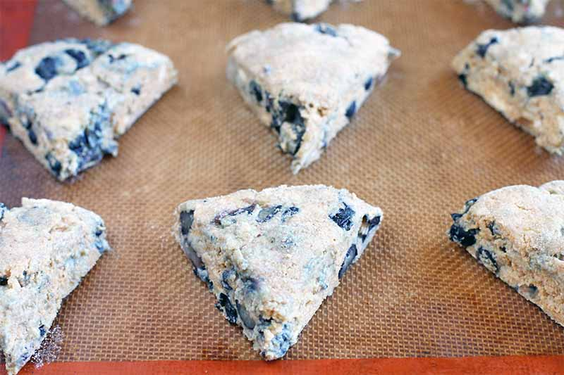 Portioned dough shaped into triangles with fresh blueberries throughout, on a Silpat silicone pan liner.