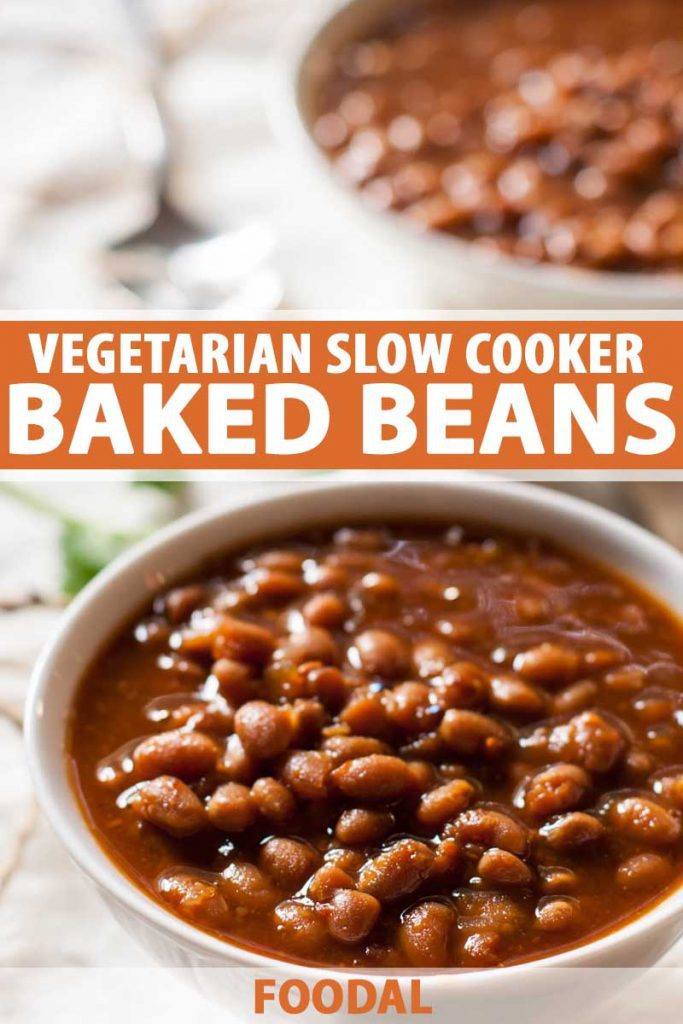 Oblique view of two bowls of vegetarian slow cooker baked beans with one bowl in the foreground and one in a diffused background.