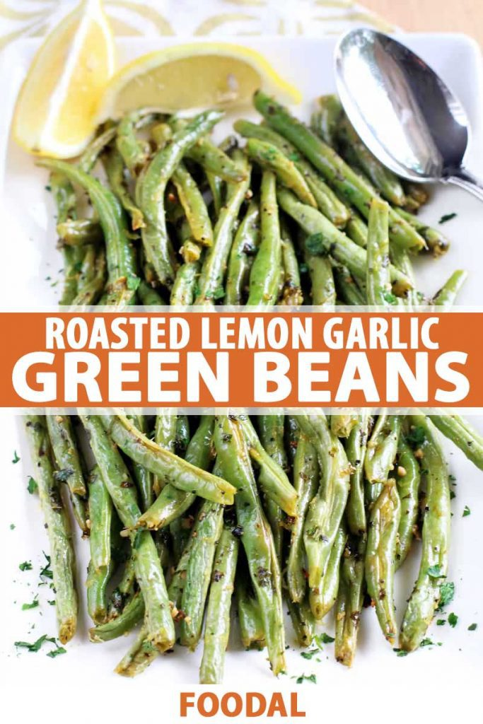 Top down view of roasted garlic green beans with lemon wedges, a spoon, and a sprinkling of fresh herbs, on a square white serving dish.