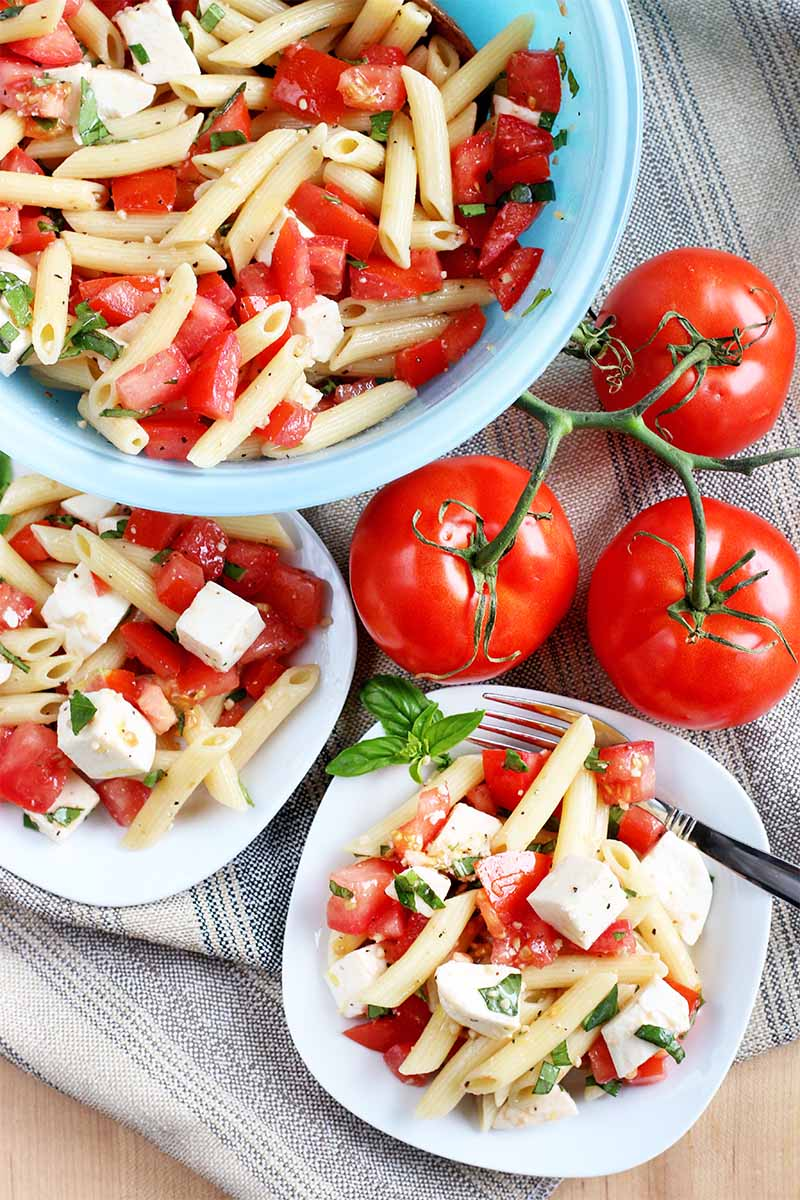 Top-down shot of two white rounded square plates and a light blue glass bowl of pasta salad, with three tomatoes on the vine on a folded gray cloth.
