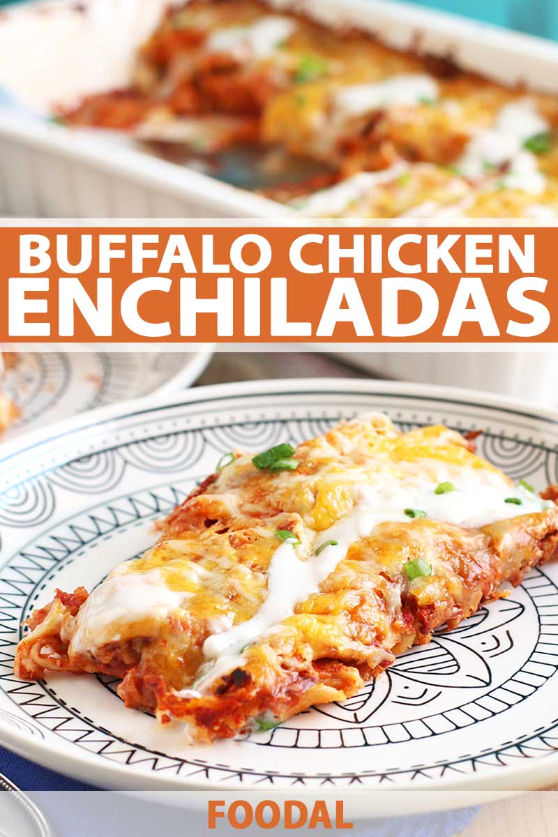 A Buffalo chicken enchilada is on a white plate with a black pattern in the foreground, with a ceramic baking dish filled with the casserole in soft focus in the background, printed with white and orange text in blocks in the top third and at the bottom of the image.