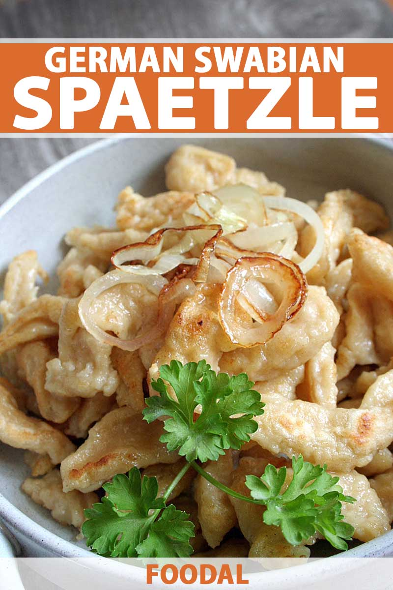 Close up of a German Swabian spaetzle dish with onions and cheese on top and garnished with fresh parsley.