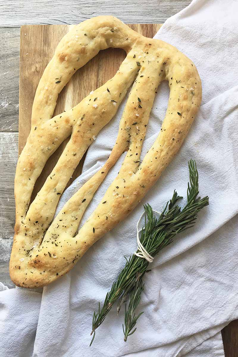 Vertical image of fougasse with a bundle of rosemary.