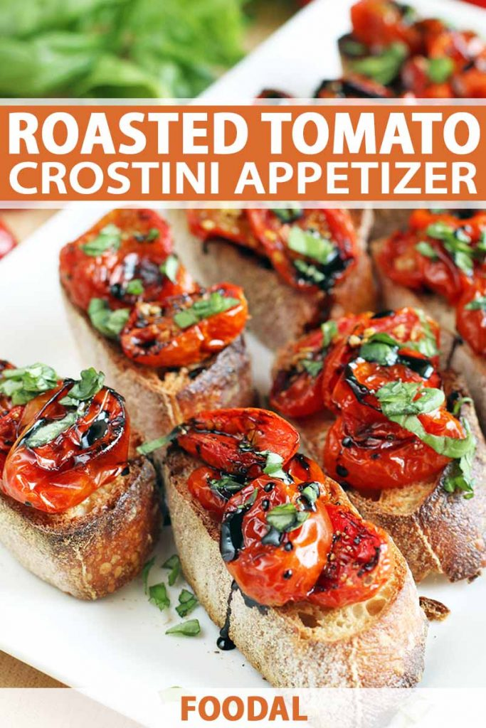 Roasted tomato crostini with chopped basil and a balsamic vinegar reduction, on a white rectangular plate, with a bunch of fresh herbs in soft focus in the background, printed with orange and white text.