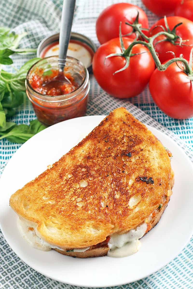 Overheat shot of a grilled cheese sandwich on a white plate, with a bunch of basil, a small jar of tomato jam with a spoon stuck into it, and five red tomatoes on the vine in the background.