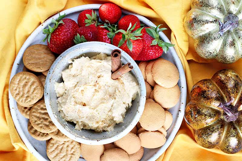 Top-down shot of a chip and dip set filled with pumpkin cream cheese garnished with two cinnamon sticks, surrounded by cookies and strawberries, on a yellow cloth with one silver and one gold decorative pumpkin.