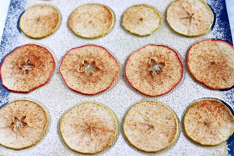 Homemade red and green baked apple chips, sprinkled with ground warming spices, arranged on a blue and white silicone baking mat.