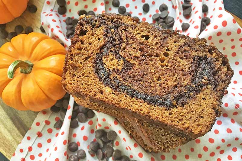 Horizontal image of slices of pumpkin bread with chocolate swirls.