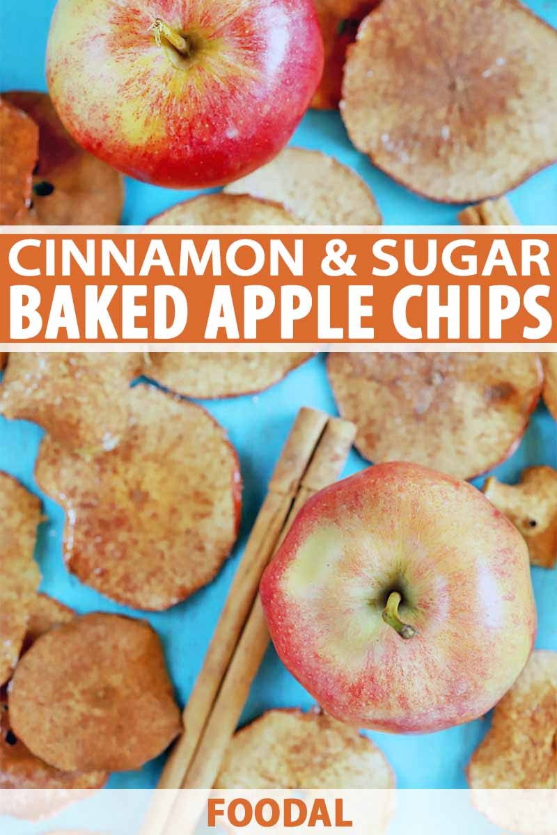 Vertical overhead image of homemade apple chips, two whole fruit, and cinnamon sticks, on a blue background, printed with orange and white text.