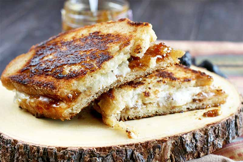 A golden brown grilled cheese sandwich, cut in half and stacked on a wooden log slice serving board, on a wood background with a jar of fig jam and dried fruit.