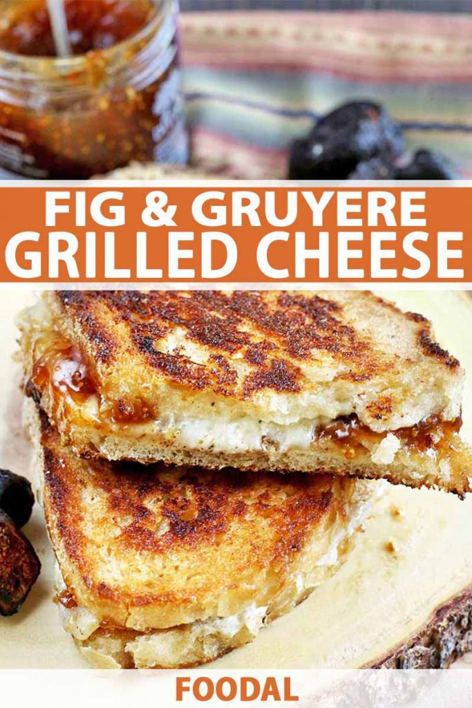 Vertical image of two halves of a grilled cheese sandwich with dried figs and a jar of jam, on a wood surface.