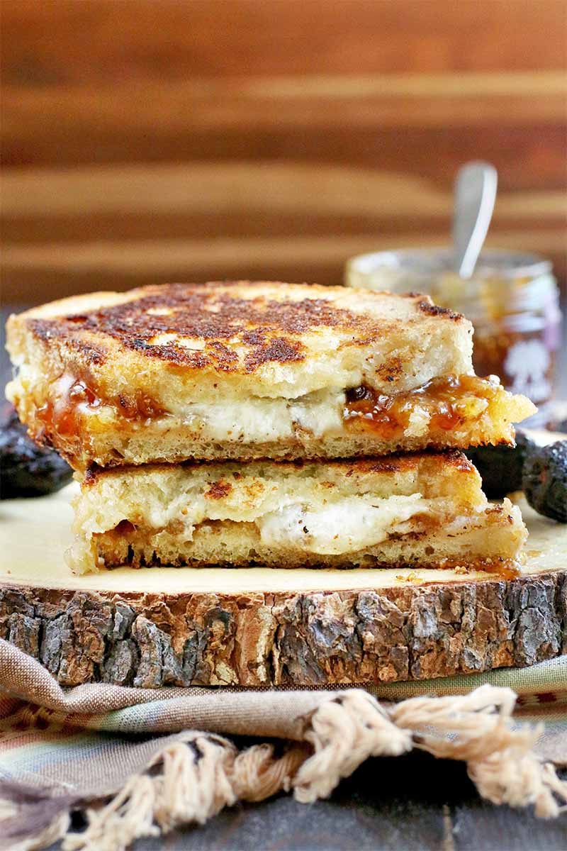 Two halves of a grilled sandwich stacked to show the cheese and jam filling, on a wooden board with tree bark around the edge, on a folded cloth with fringe, with a jar of jelly with a spoon sticking out of it in the background, against a striped brown backdrop.