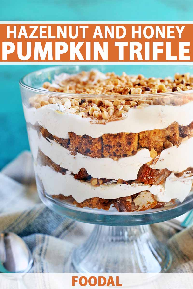 Side view of a layered pumpkin cake and whipped cream trifle, topped with cinnamon and toasted hazelnuts, with a gathered pale blue and gray striped cloth at the base and an aqua background, printed with white and orange text.