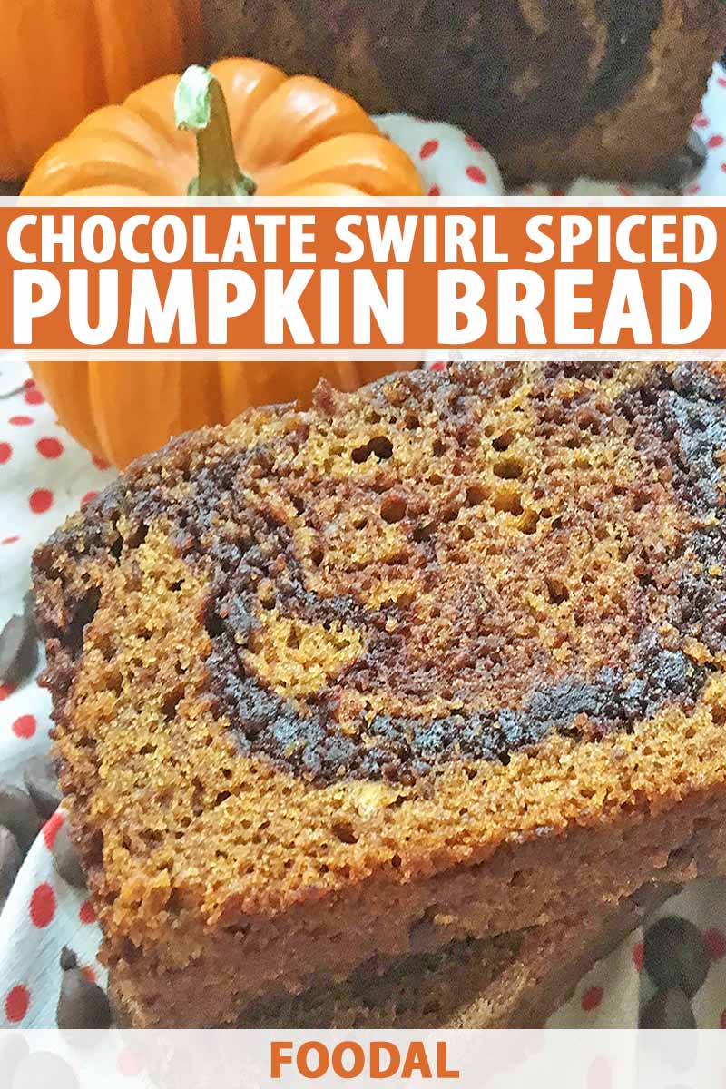 Vertical close-up image of a slice of pumpkin bread with chocolate swirls and orange text.
