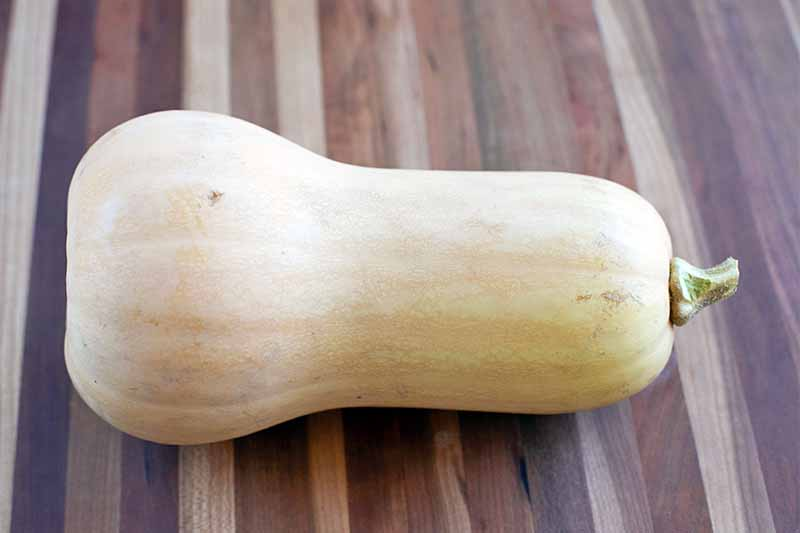 A whole butternut squash laying on its side on a striped wood surface in various shades of beige and brown.
