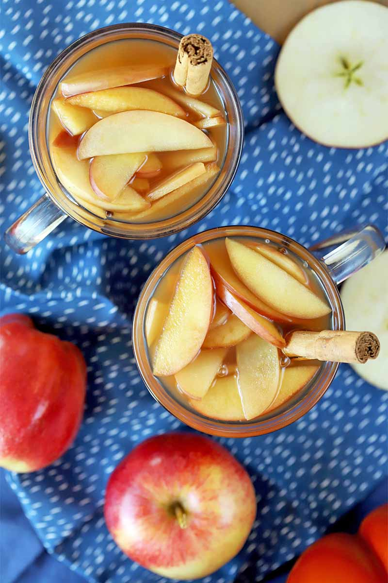 Vertical overhead shot of two glasses filled with punch and sliced fruit, garnished with cinnamon sticks, on a gathered blue and white tablecloth with sliced and whole apples.
