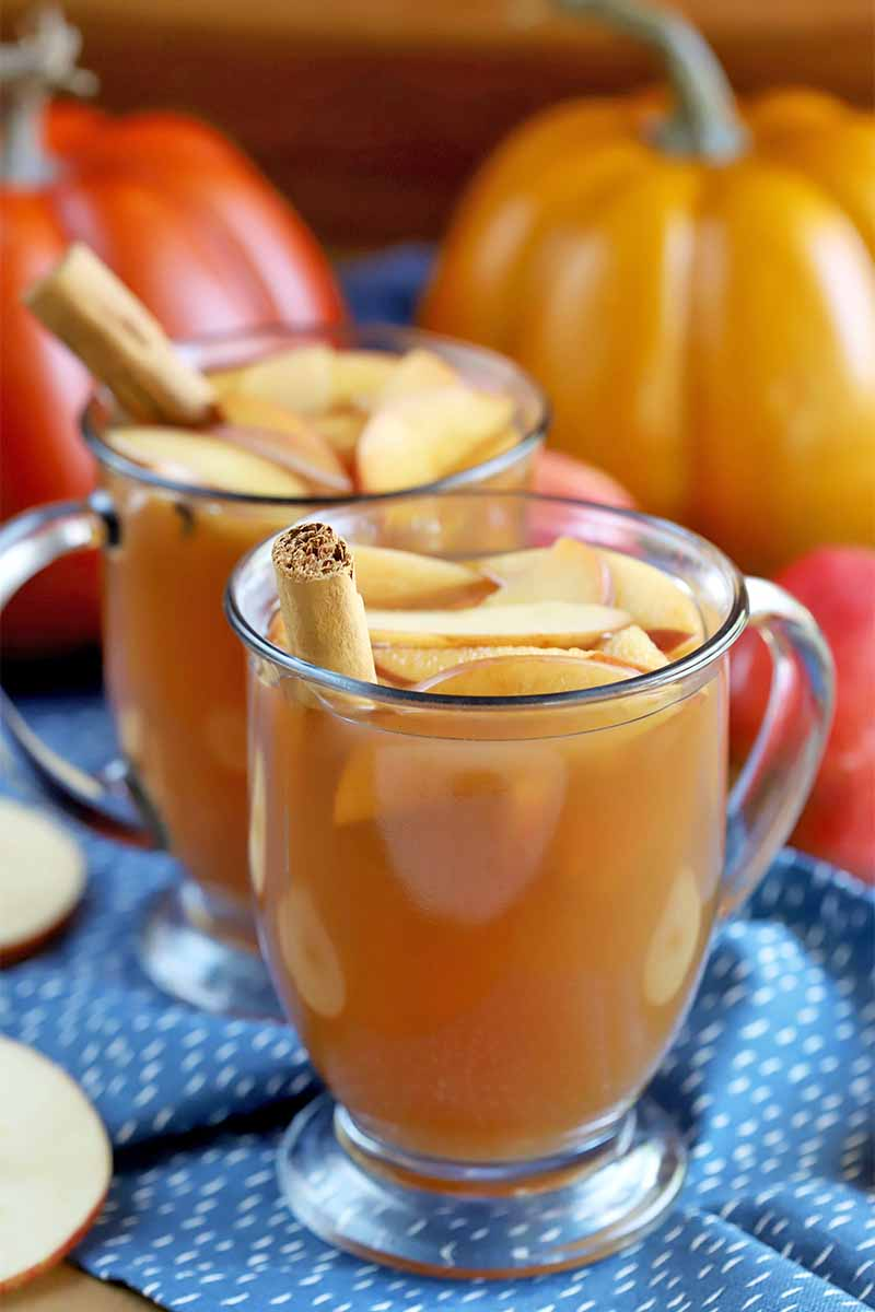 Two glass mugs of hard cider punch, with sliced apples and cinnamon sticks, on a gathered blue cloth with white flecks, in front of two orange plastic pumpkins.