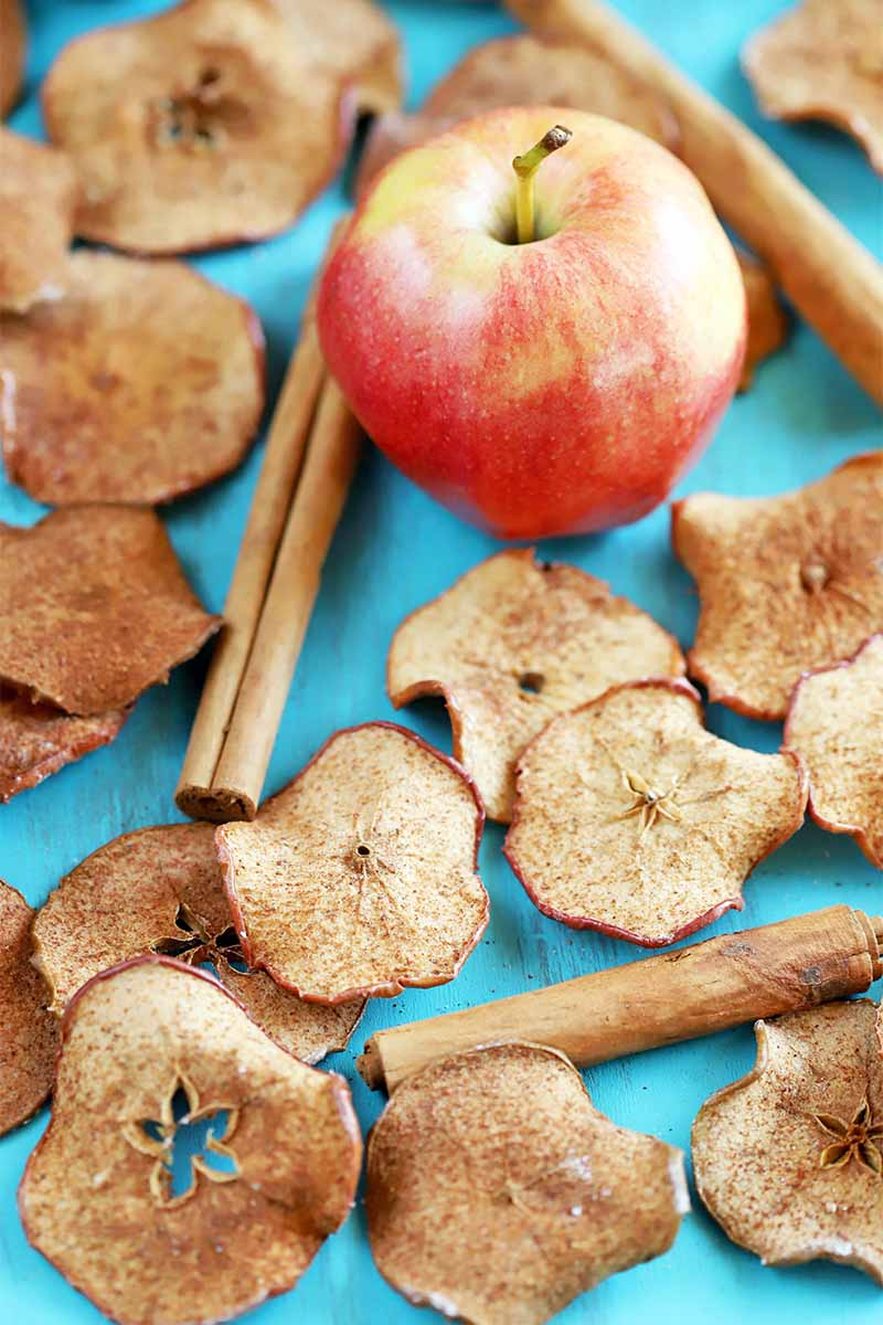 Vertical image of an apple with whole cinnamon sticks and baked apple chips sprinkled with spices, on a bright blue background.