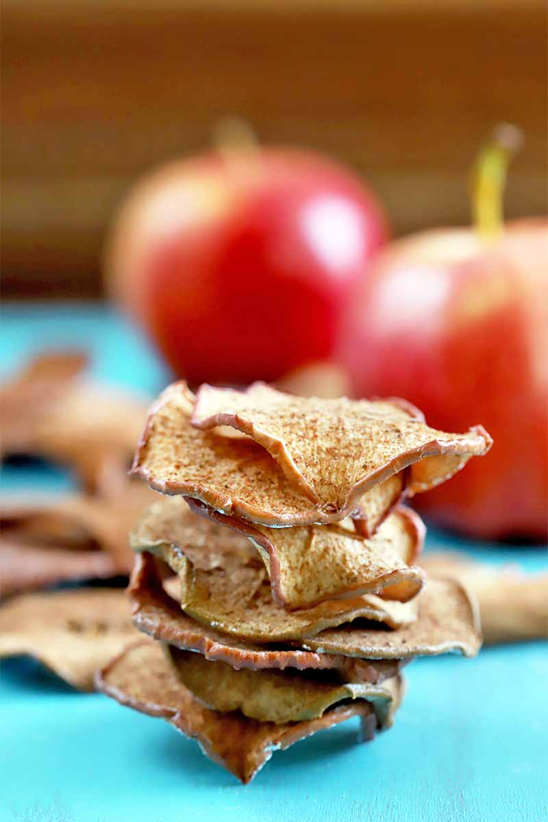 A short stack of baked cinnamon apple chips is in focus in the background, with more on a blue surface and two whole apples against a brown backdrop behind them in soft focus.