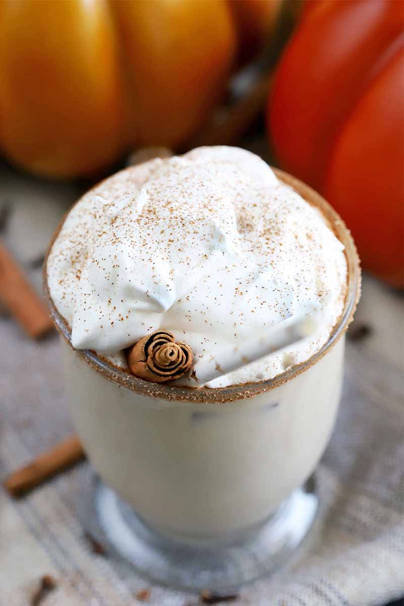Pumpkin spice latte with a spiced sugar rim, whipped cream, and cinnamon garnish, in a glass mug on a cloth surface, with decorative light and dark orange pumpkins in the background, and scattered cinnamon sticks and whole cloves.