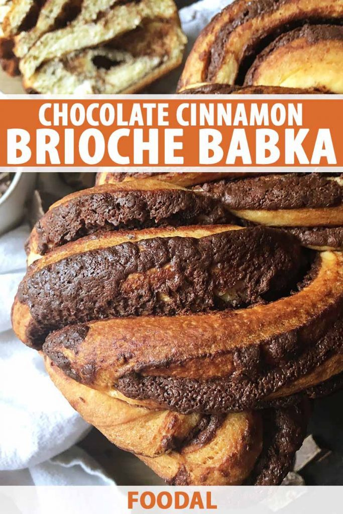 Vertical close-up image of a whole baked loaf of chocolate cinnamon brioche bread.