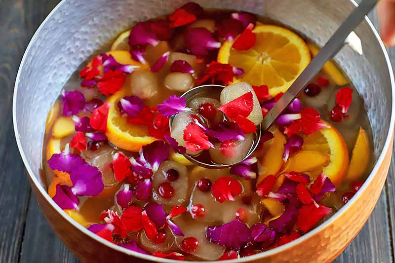 Horizontal image of a bowl filled with liquid, flower petals, and sliced fruit.