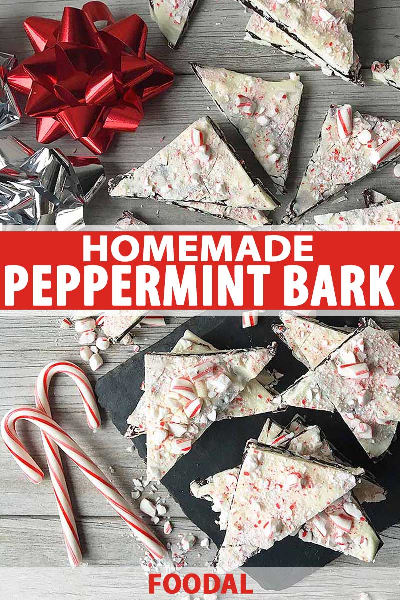 Top down view of home peppermint bark made with layers of dark and white chocolate with a crushed peppermint topping. Pieces of the bark are scattered on gray, weathered wooden surface. Candy canes are also scattered on the table.