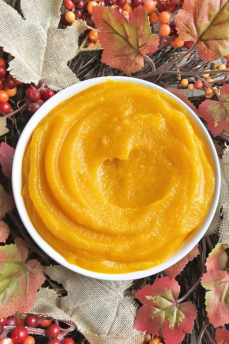 Vertical top-down image of an orange mixture in a white bowl next to fall foliage.