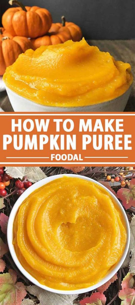 A collage of photos showing different views of a bowl of homemade pumpkin puree.