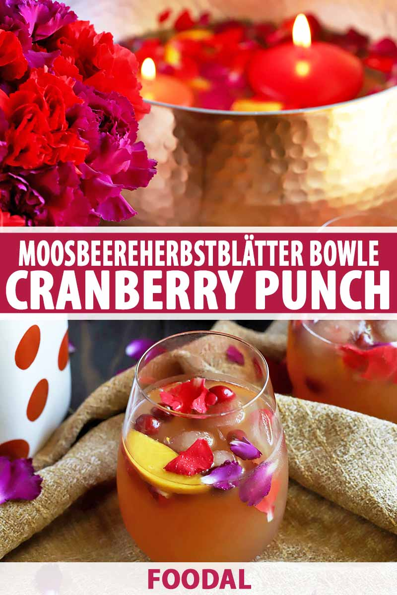 Vertical image of two stemless wine glasses of fruit bunch with floating flower petals, sliced fruit, and cranberries, with a bouquet and a metal bowl of the drink with floating red-orange candles on top, printed with maroon and white text at the midpoint and the bottom of the frame.