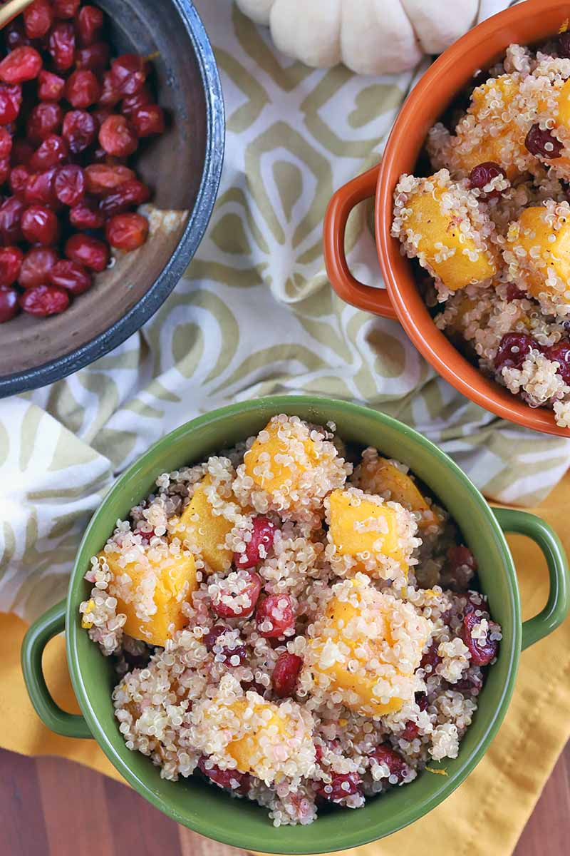 Overhead vertical shot of one orange and one green ceramic double-handled crocks filled with a mixture of quinoa, butternut squash, and cranberries, on a yellow and a white and beige patterned cloth, with a blue bowl of roasted berries at the top left corner of the frame, and a miniature white pumpkin at the top right.
