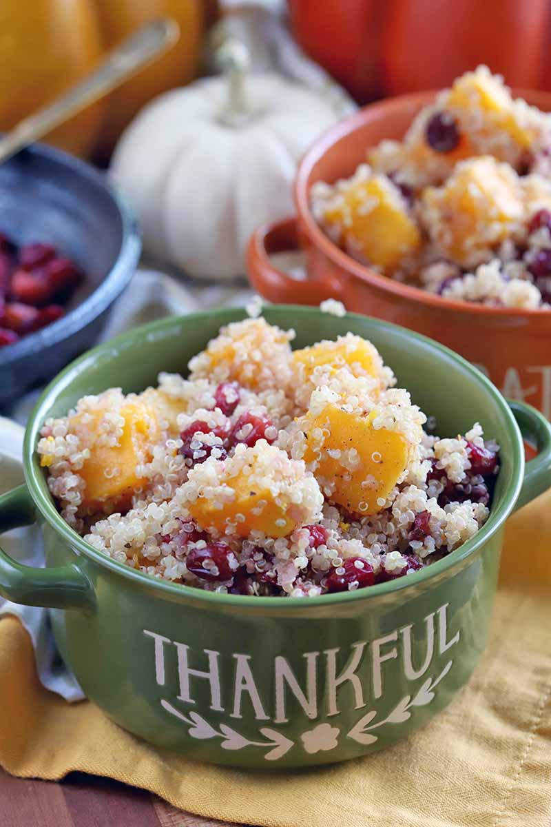 Green and orange double-handled ceramic crocks of quinoa with winter squash and cranberries, with a blue serving dish of berries, a white miniature pumpkin, and two orange plastic decorative gourds in the background.