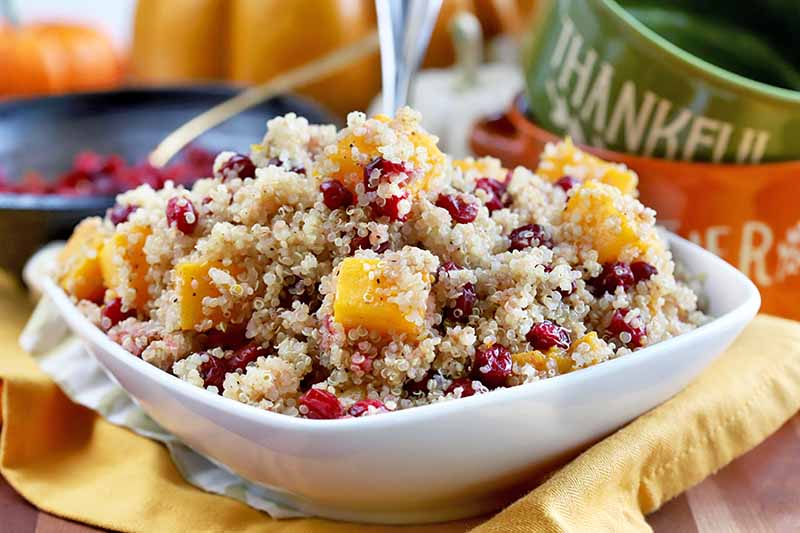 A white square serving dish of quinoa with butternut squash and cranberries, on a mustard-colored cloth with orange and green mugs and decorative pumpkins in the background.